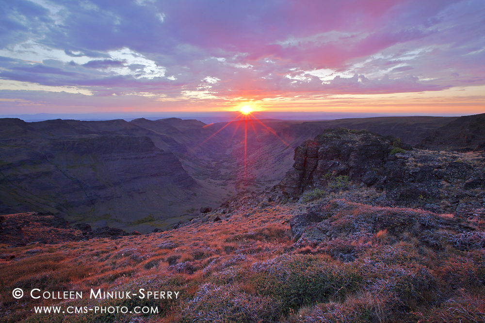 Summer Celebration on Steens Mountain